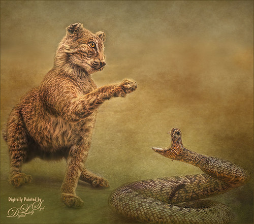 Image of a leopard and snake