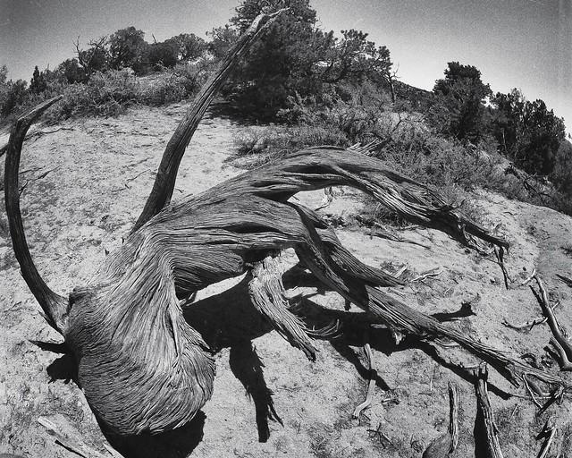 1948 Aztec UFO Crash in Northern New Mexico