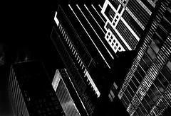 chicago skyline: marti belcher