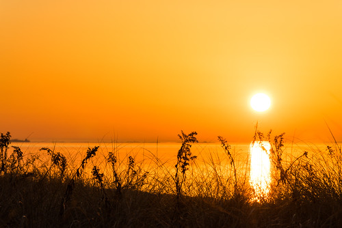 ocean orange sunrise photography longisland explore fireisland i captreestatepark