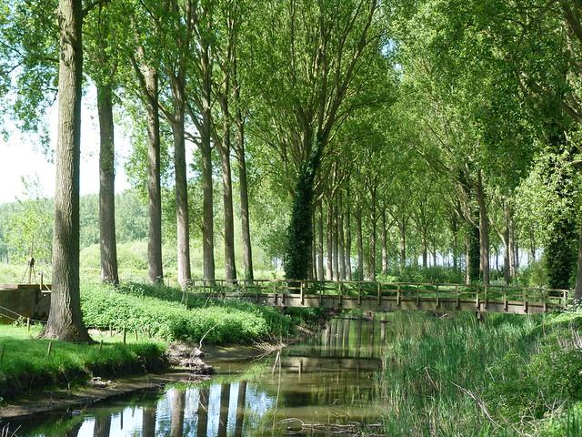 Río en Damme (Flandes)