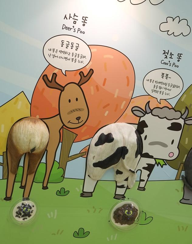 Korea Toilet Museum