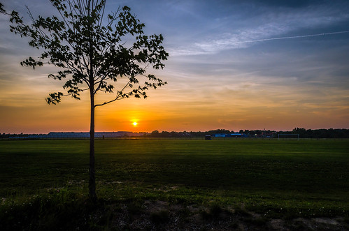 light sunset summer sky orange sun tree green philadelphia nature beauty grass clouds landscape us nikon unitedstates pennsylvania luminence d7000