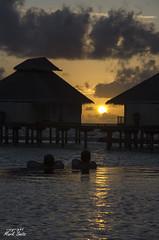 Maldives - Ellaidhoo - Sunset from infinity pool