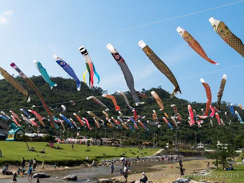 奥ヤンバル鯉のぼり祭り-67