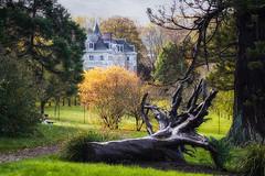 Parc du château de Dormans - Photo of Crézancy