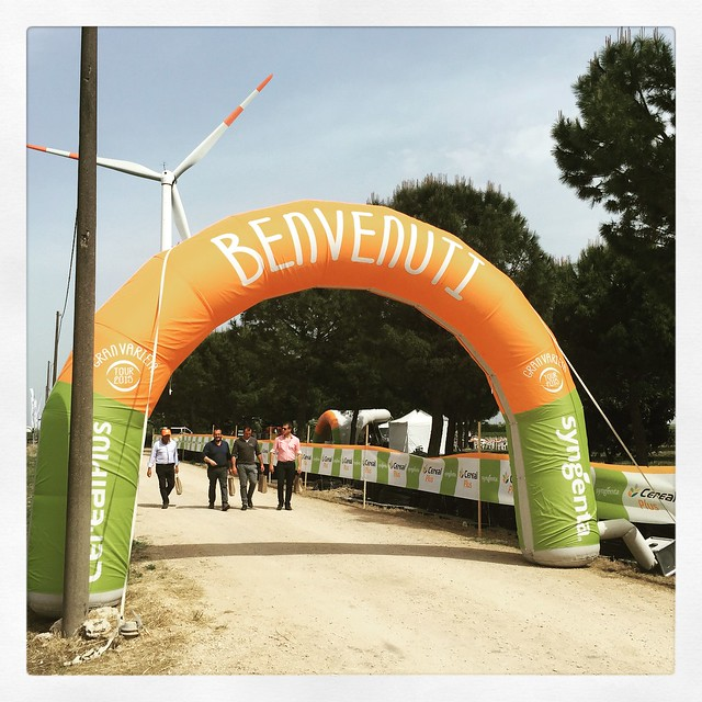 Syngenta in campo 2015