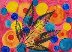 Cannabis In Zero Gravity - 2015