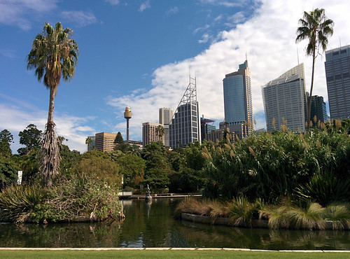 view of the CBD from the Royal Botanic Gardens