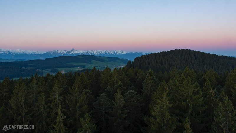 Forest view - Chuderhüsi