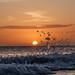 Splash and Sunset by RaminN
