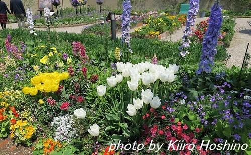 G9Xレビュー、ガーデンミュージアム・花の庭