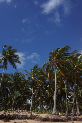 vacation in Dominican Republic