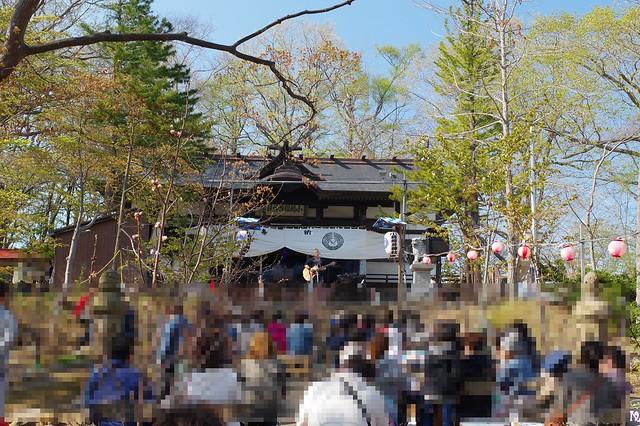 20160508手宮公園の桜_08
