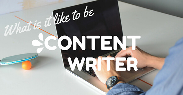 Professional Content Writer