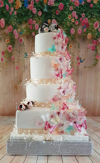 Guinea Pig and Butterfly Wedding Cake by Perin Ghadially of Perin's Occasional Cakes