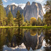 Yosemite National Park: Cathedral Reflections