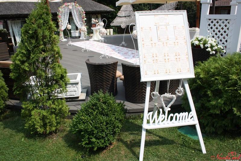 Dorina Decor > Foto din galeria `Despre companie`