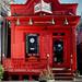 The Little Store (in P-Town) by Nancy Y. Bray