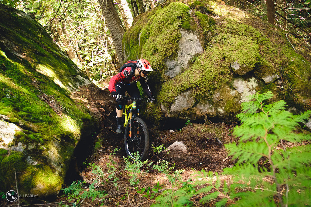Jesse Melamed on Fat Tug trail, Pemberton
