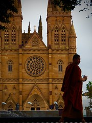 Monks and Cathedrals