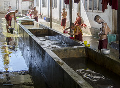 Monks' Ablutions in Burma