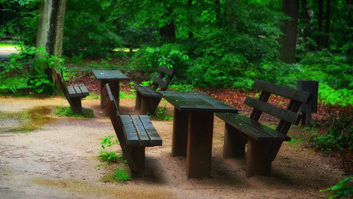 Sitzgruppe Tannenwald