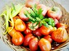 Colour Of Life Red Tomatoes Vegetables Bunch Of Tomatoes Green Pepper Herb Garden Harvest Summer Rural Agriculture