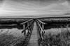 Holzbrücke am Leuchtturm Westerhever
