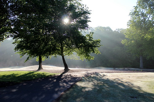 morning trees golf northcarolina millcreekgolfclub