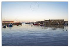 Evening Harbour