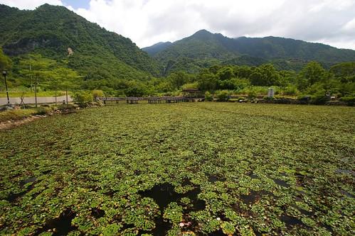 花蓮縣富里鄉羅山遊憩區周邊景點吃喝玩樂懶人包 (3)