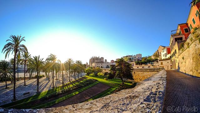 Posta de sol al Parc de la Mar (Palma)