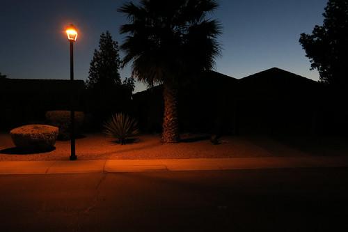 street arizona usa phoenix streetlight dusk palmtree roofline afterglow gloaming subdivision 2015 canonpowershots110 desertlandscaping blinkingcharlie sgolfsidelane