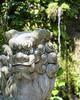 I love this shot of a shrine in #Kamakura #Japan #DiscoverJapanContest