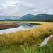 Kruzof Island Landscape, Sitka Sound