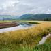 Kruzof Island Landscape, Sitka Sound.jpg
