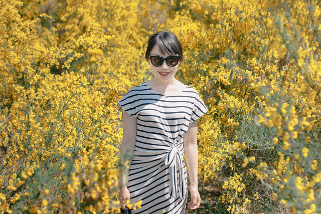 striped dress blogger