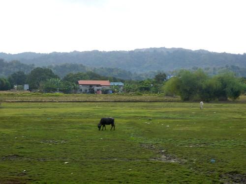 P16-San Fernando-Baguio-route (2)