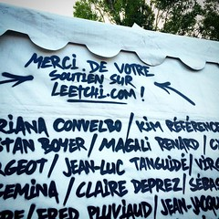 D'une certaine manière, on peut dire que je suis à l'affiche du 41ème Festival Musiques Métisses 😉