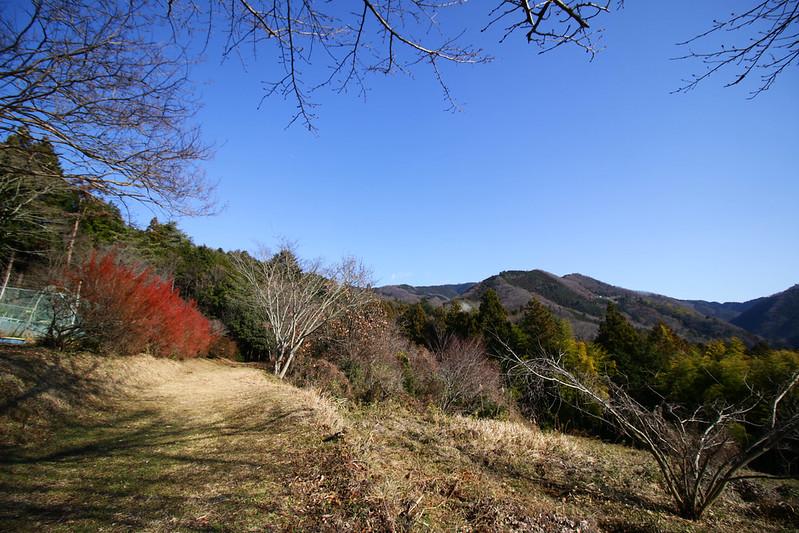20141230-陣馬山-0146.jpg