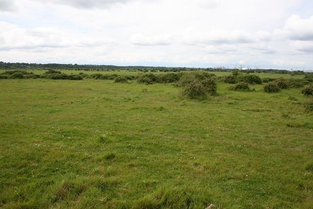 Scrubland near Hythe