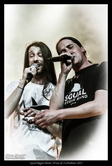 Squal Reggae Band, 20 ans de Turbulences