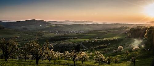summer landscape schweiz switzerland nikon sommer landschaft aargau magden 2015 fricktal kamill wieloch d3100