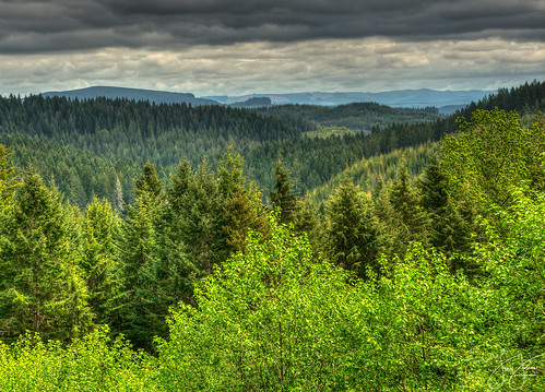 county oregon forest tillamook scenic overlook viewpoint hdr