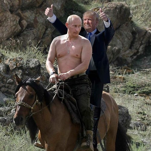 Thank you Internet!!! #lol #Putin #Trump #nevertrump Thank you Internet!!! #lol #Putin #Trump #nevertrump