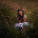 Lauren by {jessica drossin}