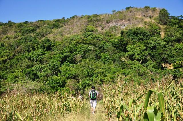 Barangay Solcok, Vintar