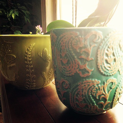 Ceramic Study ~ Wordless Wednesday