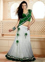 Indian Lehenga Choli 2015 - Fabulous Dresses For Young Girls   fashionxstyles.com